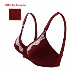 Lunavie Sheer Comfort Nursing Bra (Maroon)